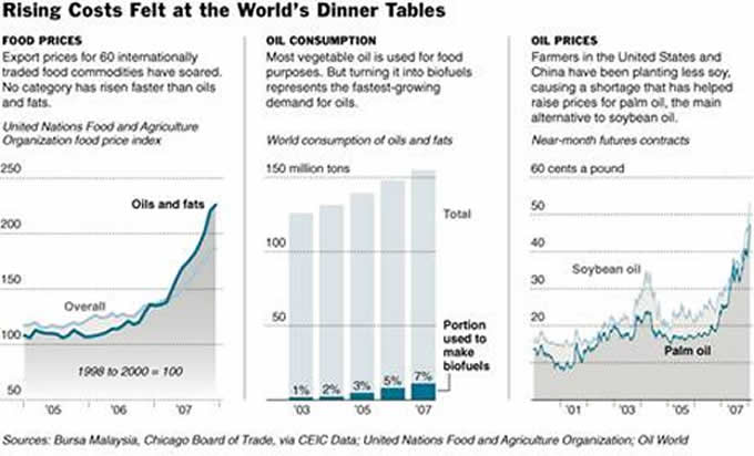 Rising Costs Felt at the World's Dinner Tables