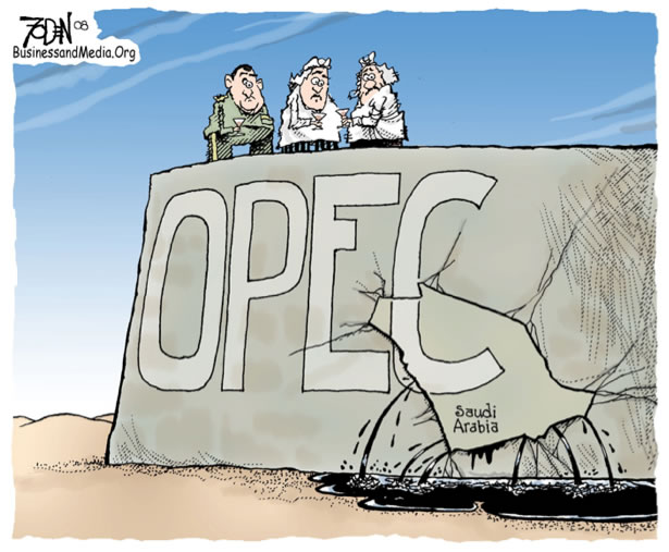 What does opec stand for