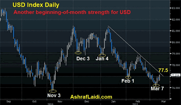 USD Index Daily