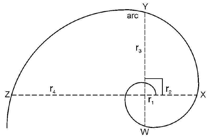 Fibonacci In Nature The Golden Ratio And The Golden
