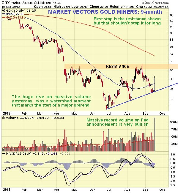 GDX Market Vectors Gold Miners NYSE