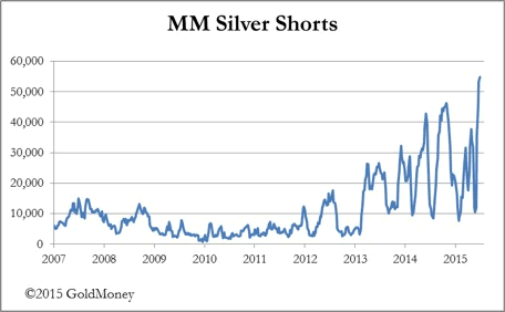 MM Silver Shorts