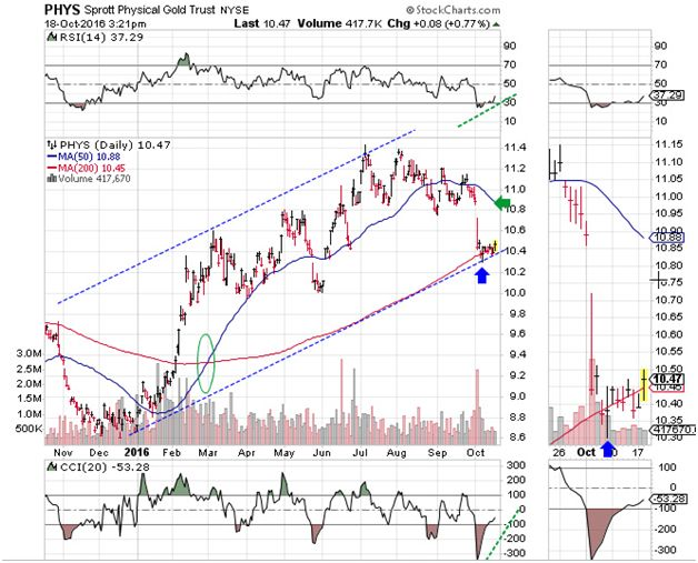 Sprott Physical Gold Trust Daily Chart