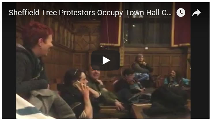 Tree Protestors Occupying Sheffield Town Hall City Council Chamber