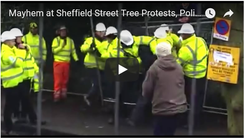 Mayhem at Sheffield Street Tree Protests, Police, Bouncers and Multiple Assaults Meersbrook Park Road