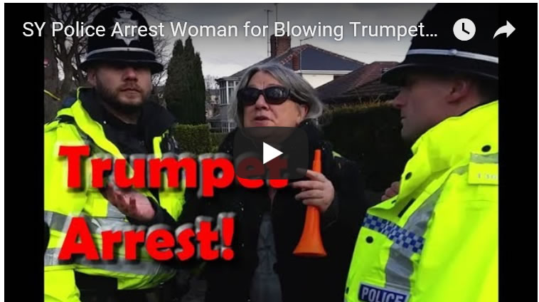 SY Police Arrest Woman for Blowing Trumpet at Sheffield Tree Felling Protest