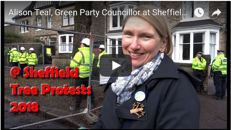 Green Party Councillor Alison Teal at Sheffield Street Trees Fellings Protests 2018