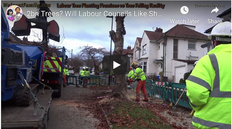 Will Labour Government Plant More Tree's than Council's Like Sheffield Fell?