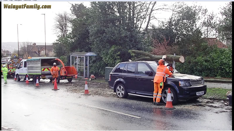 Range Rover vs Huge Tree Branch Falling on its Roof - Land Rover UK Storm Weather