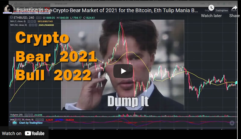 Investing in the Crypto Bear Market of 2021 for the Bitcoin, Eth Tulip Mania Bull Market of 2022