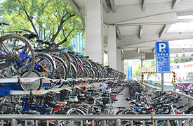Some people see a bunch of bikes ... I see the Asian Megatrend!