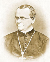 Gregor Mendel's pea plants were the foundation of modern genetic science.